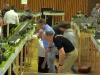 ausstellung-2011-03-12-bild-08